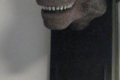 tête-T-rex-un-cinquième